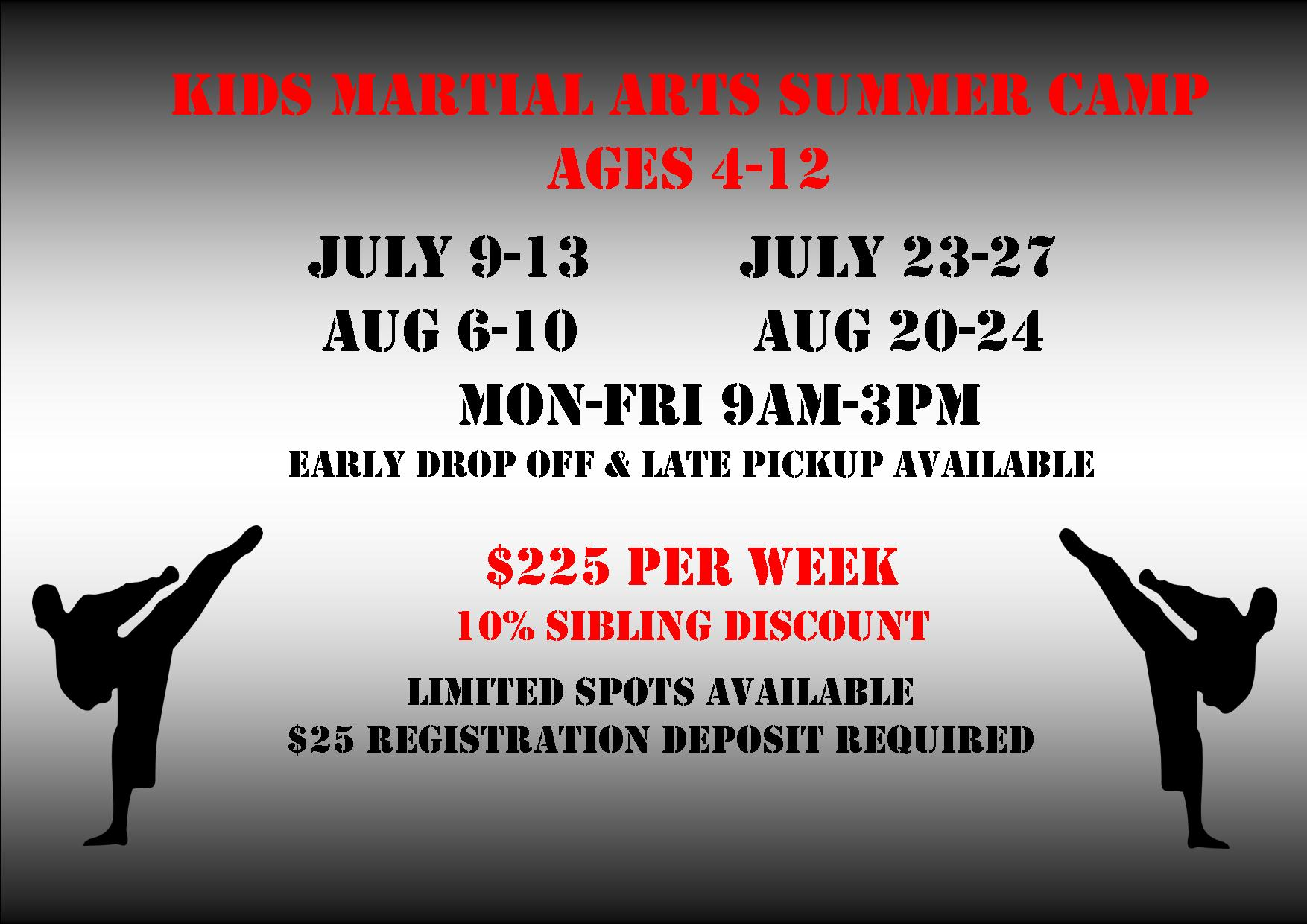Kids martial arts summer camp